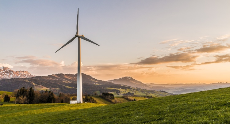 Why change-makers intrapreneurs are an important source of clean energy for businesses